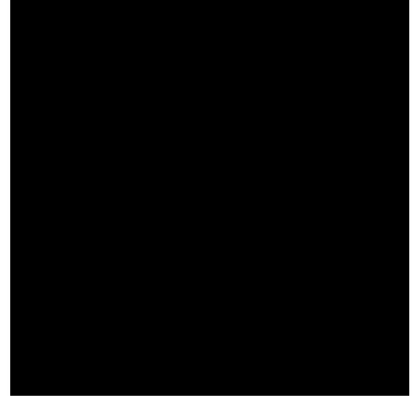 1257Рафаэль дизайн